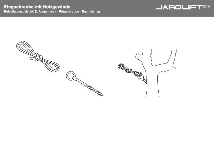 E: Abspannseil - Ringschraube - Baumstamm